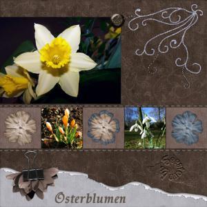 osterblumenweb.jpg